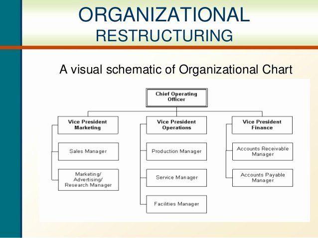 30 Department Reorganization Plan Template In 2020 throughout Business Reorganization Plan Template