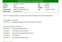 Certificate Of Vaccination Template ] – Dog Certificate pertaining to Certificate Of Vaccination Template