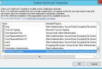 Client Certificate Or Certificate Plus Domain Authentication regarding Workstation Authentication Certificate Template