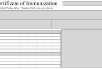 Free Sample Certificate Of Immunization | Certificate Template in Certificate Of Vaccination Template